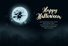 Happy Halloween. Witch flies on broomstick in dark forest at night Stock Images