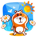 Happy hamster Stock Photos