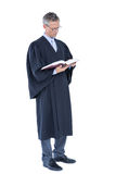 Happy handsome lawyer holding labor code Royalty Free Stock Image