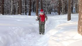 Happy handsome little boy skis in forest at sunny day stock video