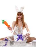 Happy hare Royalty Free Stock Images