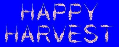 Happy harvest royalty free stock photography
