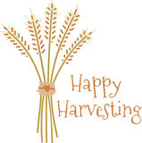 Happy Harvesting Royalty Free Stock Photo
