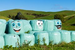 Happy Hay Bales. Wrapped up hay bales with happy faces royalty free stock images