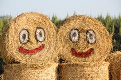 Happy hay face Royalty Free Stock Photos