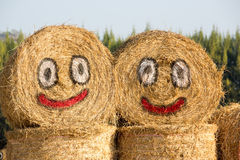 Happy hay stock image