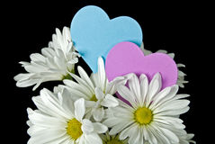 Happy Hearts Stock Photos