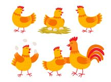 Happy hen cartoon character in different poses isolated on white background. Hen and rooster vector flat illustration Royalty Free Stock Photography