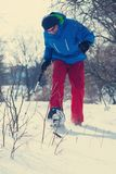 Happy hiker in snowshoes walks through the winter forest Royalty Free Stock Photos