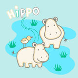 Happy hippo's standing in water with a bird Royalty Free Stock Photo