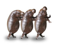 Happy Hippos. Three obese hippos have a fun royalty free stock photos