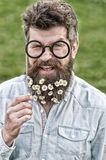 Happy hipster with tiny white flowers in his long beard holding paper glasses from party accessories set. Smiling man Stock Photo