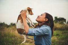 Happy hipster woman smiles and holds a small dog. Little puppy w. Ith hipster girls in field sunset background. Vintage tone style stock images
