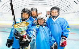 Happy hockey players with trophy on ice rink stock images