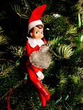 Happy Holiday Greetings from Elf on the Shelf royalty free stock image