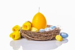 happy holidays Αυγά Πάσχας, κερί στη φωλιά και daffodils Στοκ φωτογραφία με δικαίωμα ελεύθερης χρήσης