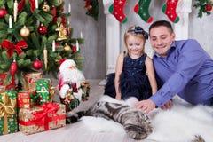 happy holidays Παιχνίδι πατέρων και κορών με τη γάτα κοντά στο χριστουγεννιάτικο δέντρο Στοκ Εικόνες