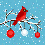 Happy holidays greeting card with bird red Royalty Free Stock Photos