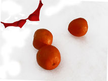 Happy Holidays (symbolic). Application for holidays card with isolated red bra and oranges on the white background Stock Photography