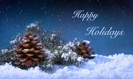 Free Happy Holidays Text On A Winter Night Stock Images - 132839684