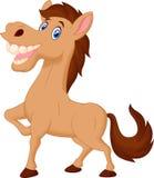 Happy horse cartoon. Illustration of Happy horse cartoon Stock Photos