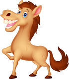 Happy horse cartoon Royalty Free Stock Images