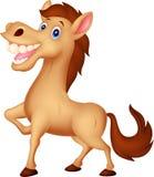 Happy horse cartoon Royalty Free Stock Images