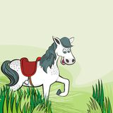 Happy horse on green farm life illustration Stock Photos