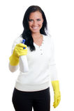 Happy housewife with window cleaner. Royalty Free Stock Photo