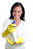 Happy housewife with window cleaner. Stock Image
