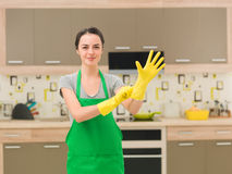Happy housewife Royalty Free Stock Photo