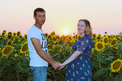 Happy husband and his pregnant wife with sunflowers Stock Image