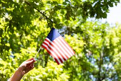 Free Happy Independence Day Of USA. American Flag In Women Hand On Green Tree Background. Fourth Of July Royalty Free Stock Image - 187096646