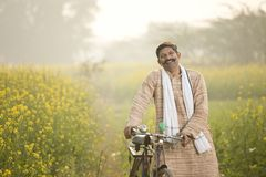 Happy indian man riding bicycle on agriculture field. Happy indian man riding bicycle on rapeseed agriculture field royalty free stock photos