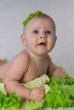 Happy infant baby in the cabbage Royalty Free Stock Images
