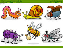 Happy insects set cartoon illustration. Cartoon Illustration of Happy Insects or Bugs Set like Bee, Beetle, Spider, Fly and Caterpillar Royalty Free Stock Photography