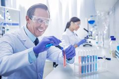 Happy intelligent man working in the chemical lab. Enthusiastic scientist. Happy nice intelligent men sitting in the chemical lab and holding test tubes while Royalty Free Stock Photos