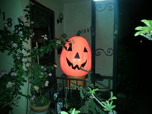 Happy Jack-o'lantern Stock Images