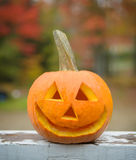 Happy Jack-O-Lantern Stock Images