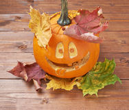 Happy jack o lantern pumpkin composition Stock Image