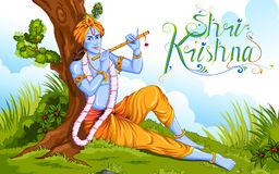 Happy Janmashtami Royalty Free Stock Photos