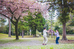 Happy Japanese guys in spring Stock Image
