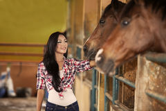 Happy jockey rider with horses Royalty Free Stock Photography