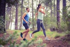 Happy joggers running Stock Photos