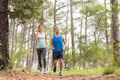 Happy joggers running Royalty Free Stock Images