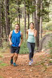 Happy joggers running Royalty Free Stock Image