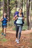 Happy joggers running Royalty Free Stock Photos