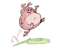 Happy jumping pig Stock Image