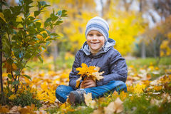 Happy kid on a background of  autumn leafs Royalty Free Stock Image