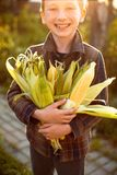 Happy kid boy with big smile and many corns in his hands. Autumn harvest. royalty free stock photography